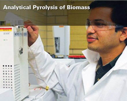 Brown_Analytical Pyrolysis of Biomass SLIDE