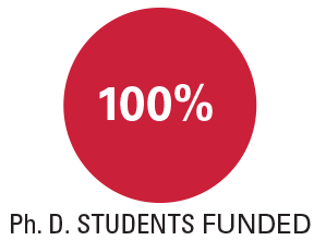 100% of PhD students funded
